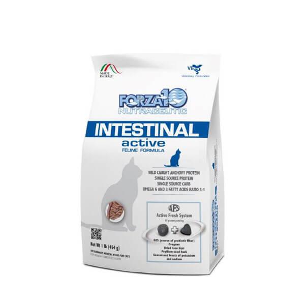 インテスティナル アクティブ キャット(胃腸)