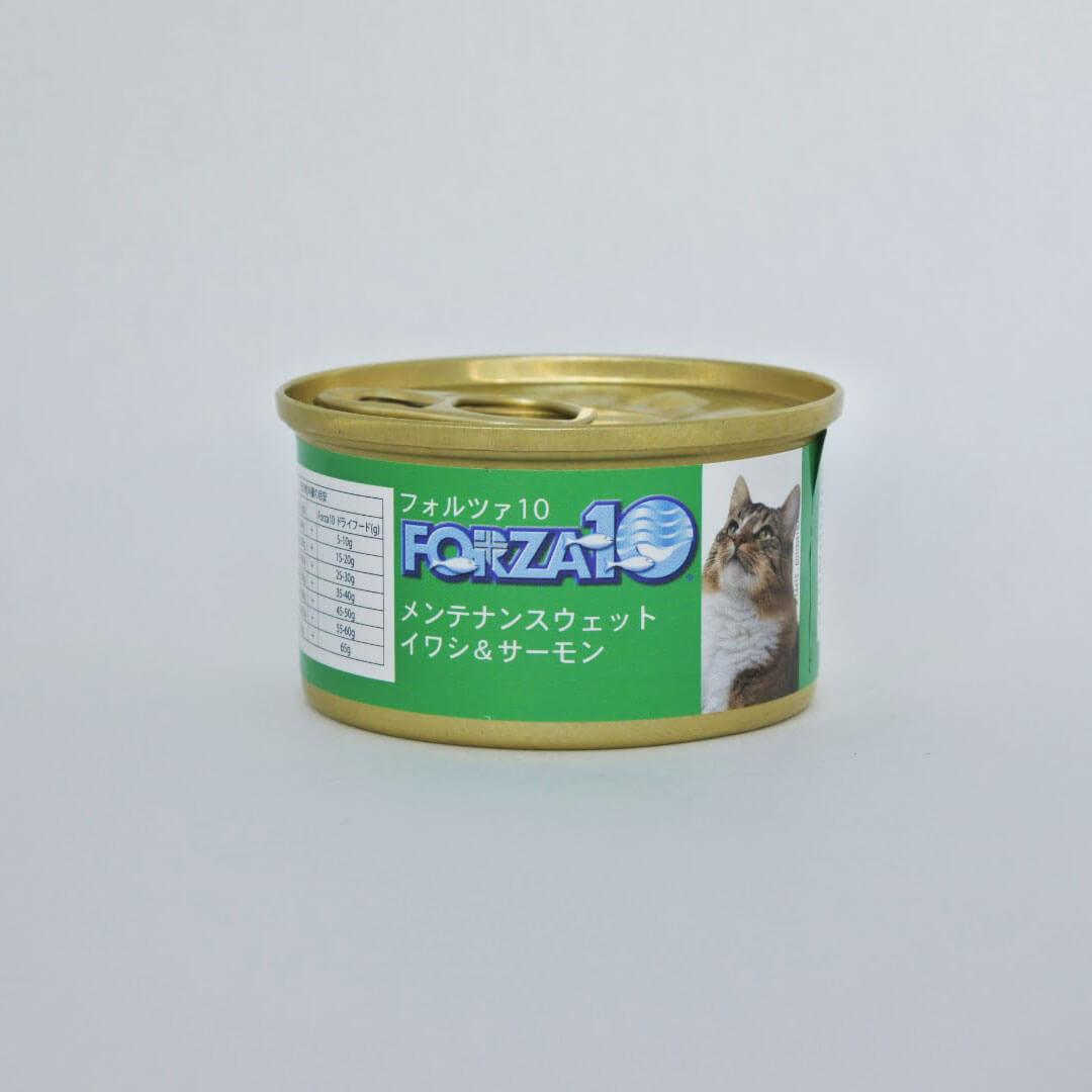FORZA10メンテナンス イワシ&サーモン