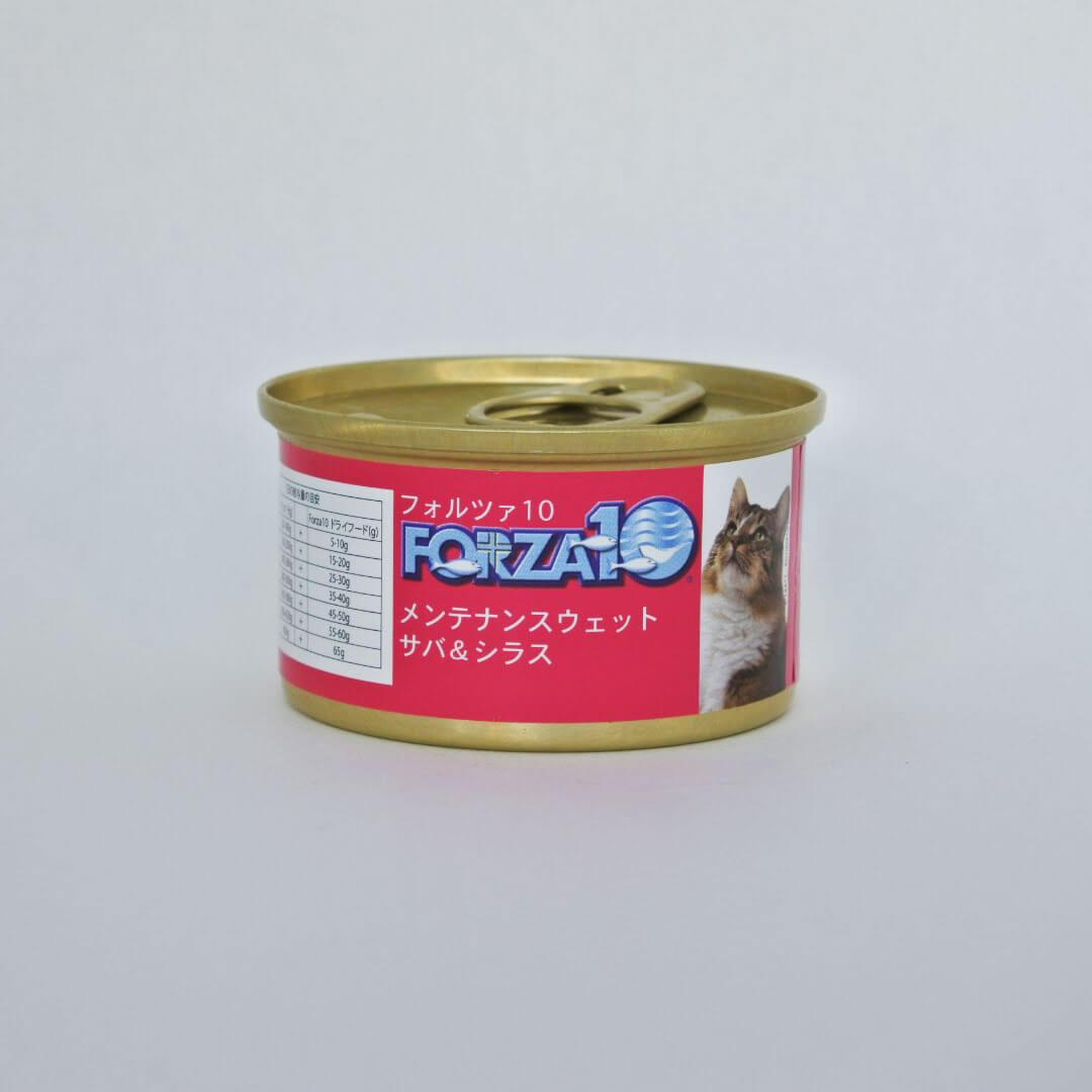 FORZA10メンテナンス サバ&シラス